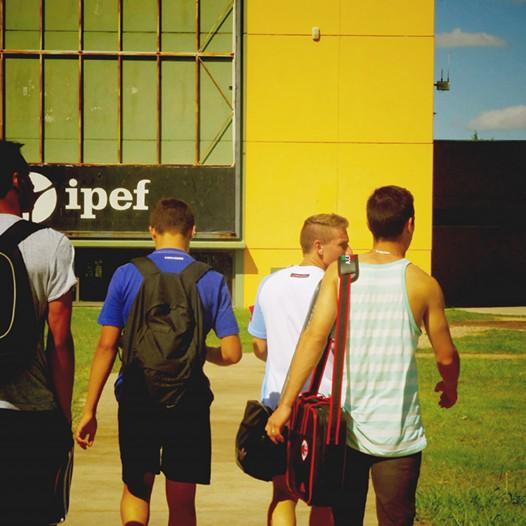 Defensas de Trabajos Finales del Ciclo de Complementación Curricular en la Facultad de Educación Física