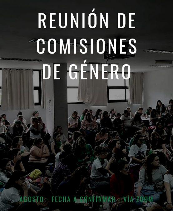 Reunión de Comisiones de Género organizada por el Observatorio de Género (UNLaM)